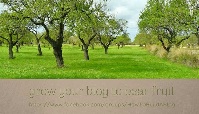 Why Blog to bear fruit
